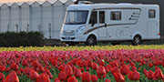 Keukenhof: in camper nel paradiso dei tulipani
