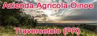 Azienda Agricola Oinoe - La Citt� del Vino