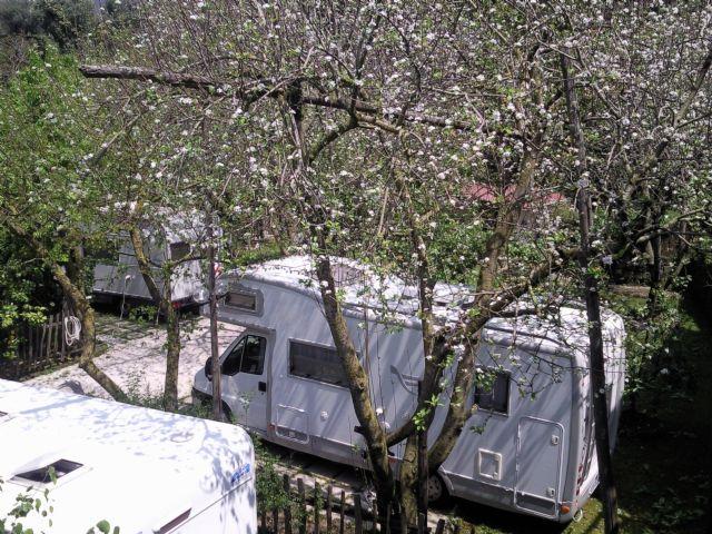 Area sosta camper Agriturismo Oasi Verde, 29/02/16