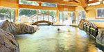 Piste da sci e piscina riscaldata: